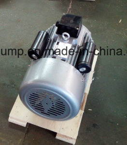 1HP 4p Single Phase Electric Motor -Start Capacitor pictures & photos