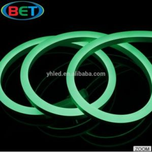100-240V Flexible 2835rope Neon Light for Garden/Park/Home Decoration 120LEDs/M 50m/Roll pictures & photos