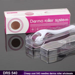 Wholesale 540 Titanium Micro Needle Derma Roller for Skincare Acne Scar Freckle Treatment pictures & photos
