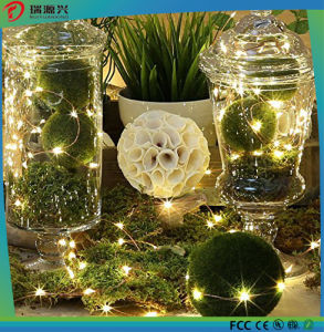 Festival Home Decoration Cooper Wire LED Holiday Light pictures & photos