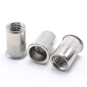 Stainless Steel 304 Insert Nut Riv Threaded Inserts Blind Rivet Nut pictures & photos