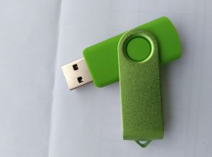 OEM Swivel USB with High Speed for Promotional Gift pictures & photos