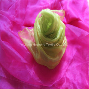 Textile Sheer Organza Fabric for Bridal Apparel Decorative pictures & photos
