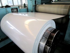 PPGL & White Color Coated Galvanized Steel Coil (Ral 9003) pictures & photos