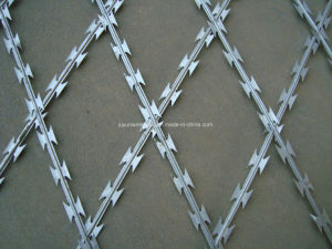 Bto-11 Bto-22 Cbt-60 Cbt-65 Razor Wire for Sale pictures & photos