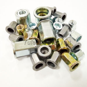 Flat Head Full Hexagonal Body Rivet Nut pictures & photos