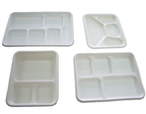 High Quality Large Output Disposable Pulp Mold Tableware Machine pictures & photos