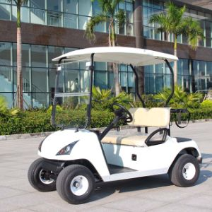 CE Approve Electric Cheap Golf Cart with 2 Seater (DG-C2) pictures & photos