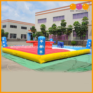 Interactive Games Inflatable Gladiator Fighting Arena for Adults and Kids (AQ1704-1) pictures & photos