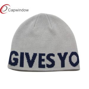 Capwindow Give You Wings Fashion Knitted Beanie Hat Winter Hat pictures & photos