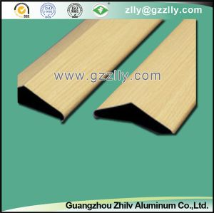 Various Strip Ceiling for Building Decoration pictures & photos