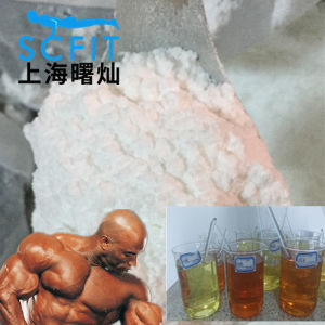 99% Nand Undecy Nandrolone Undecylate CAS 862-89-5 Raw Steroids Powders pictures & photos