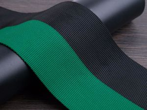 Black and Green Colors Fake Nylon Webbing for Garment Accessories pictures & photos
