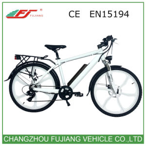 Hot Sale Ce En15194 Road Electric Bike pictures & photos