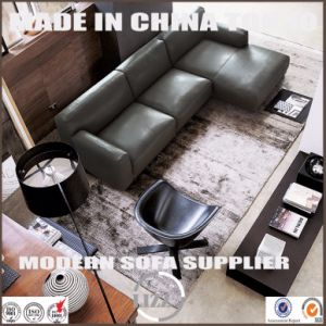 Popular Australia Modern Home Furniture Leather Feather Sofa Set pictures & photos