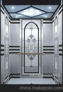 Fujizy Good Price Passenger Elevator with Beautiful Cabin pictures & photos