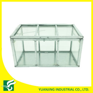Home Garden Small Galvanized Steel Frame Glass Greenhouse pictures & photos
