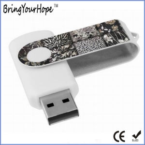 8GB USB Flash Drive with Customed Logo (XH-USB-001) pictures & photos