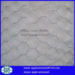 Gavlanized Hexagonal Wire Netting 0.55mm to 1.6mm Wire Diameter pictures & photos
