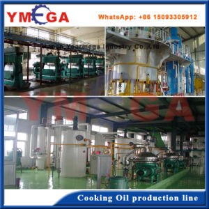 30t Palm Kernel Oil Extracting and Processing Machine Factory pictures & photos