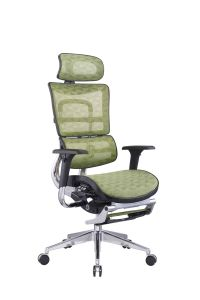 Net Back Office Chair High End Ergohuman Chair pictures & photos