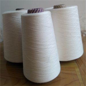 100% Rayon Viscose Raw Yarn for Knitting Hand Knitting pictures & photos