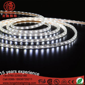 Waterproof 5050 SMD Decoration LED Strip Light pictures & photos