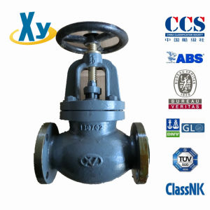 Marine Cast Iron Globe Valve Check Valve JIS F7307 F7375 10k pictures & photos