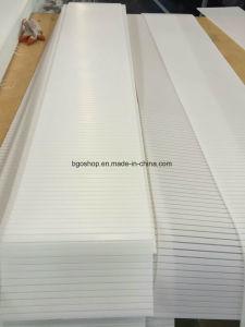 Folding Correx Sheet for Digital Printing pictures & photos
