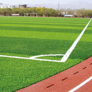 Environmental Long-Time Use Artificial Turf of Soccer pictures & photos