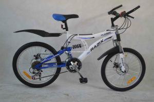 MTB Bike (WT-20406) pictures & photos