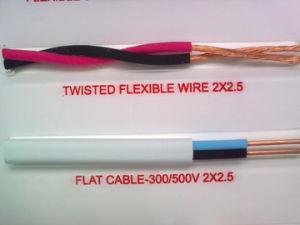 Flexible Wire (CU/PVC/PVC 300/500V 2X2.5) pictures & photos