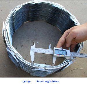 Anping Supplier Bto-60 Razor Barbed Wire (lt-07091)