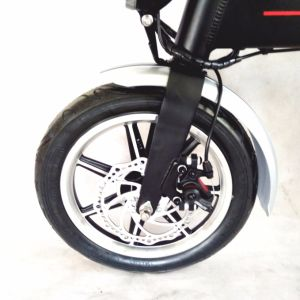 Ce Approved Folding 36volt Electric Bike pictures & photos