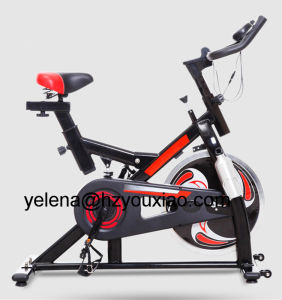 CE CB RoHS ISO9001 UL Certificated New Type Body Fitness Exercise Spinning Bike
