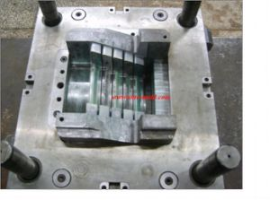 Mould and Mold/Molding