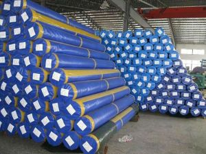 100% Original PE Tarpaulin Roll pictures & photos