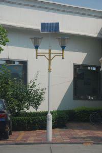 LED Garden Solar Lights