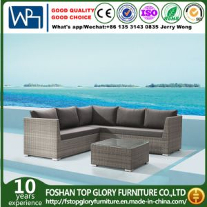 Open Weaving Modern Sofa Garden Furniture (TG-801) pictures & photos