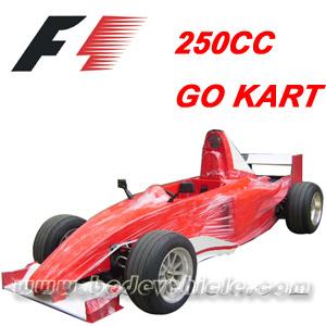 250CC Racing Go Cart/Buggy/Go Kart (Mc-477)