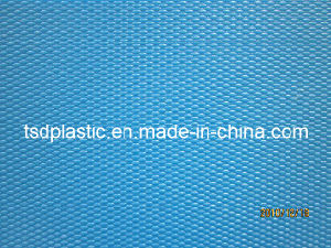 PP Textured Sheet (1200*2400 MM) pictures & photos