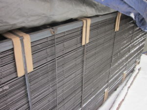 50*50mm Hot Dipped Galvanized Mesh Panel pictures & photos
