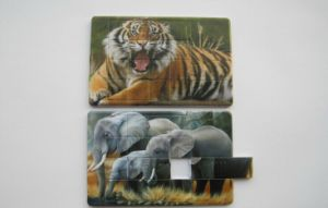 Credit Card USB Flash Drive USB 2.0 Both Sides Customzied Logo Printed (OM-P516) pictures & photos
