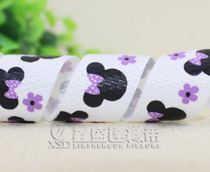 Printed Ribbon for Package