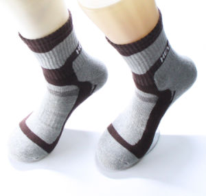 Short Leg Cotton Sport Socks with Cushion Foot pictures & photos