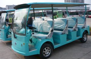 China Best 11 Seats Electric Sightseeing Car From Dongfeng for Sale