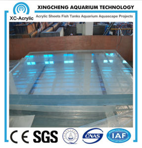 Acrylic Swimming Pool pictures & photos