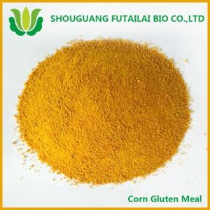 Corn Gluten Meal for Fish Meal