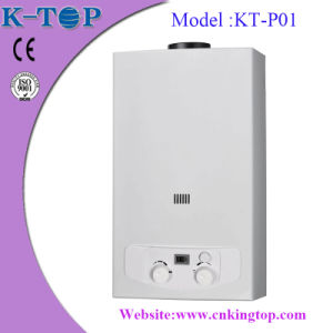 White Panel Best Selling 24kw Water Heater (6L-16L)