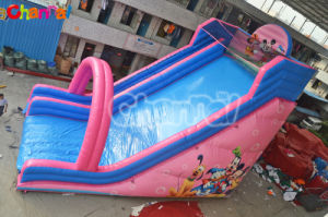 Mickey Pink China Inflatable Slide for Girls Bb220 pictures & photos